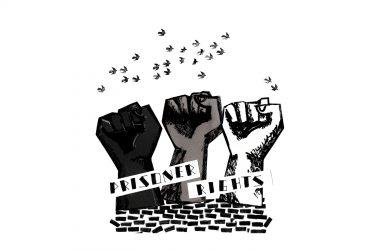 Захист прав засуджених: як FREE ZONE бере участь у формуванні та реалізації державних політик